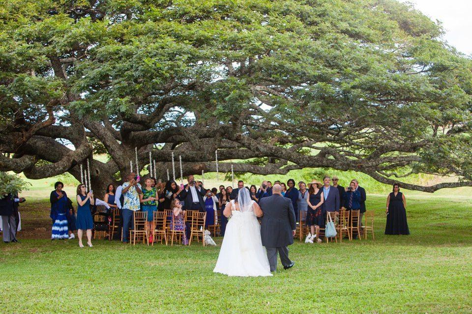 Maui wedding_14_ Behind the lens maui