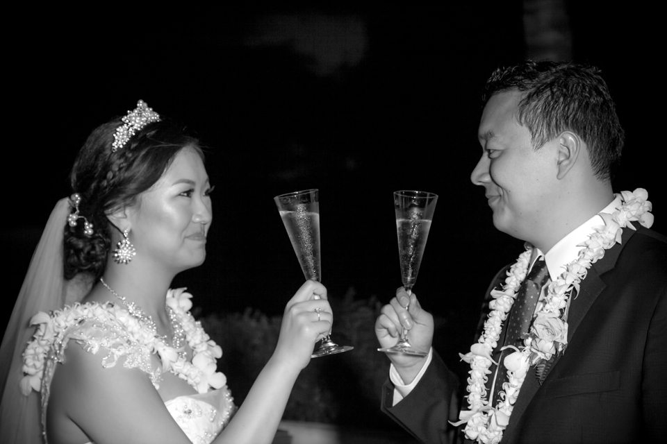 maui photography Wedding_ Behind The Lens Maui31